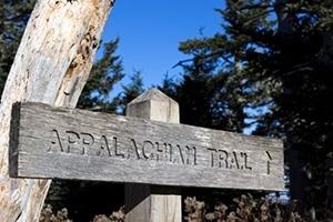ThinkingAhead Lands Suzanne Dixon Leader Appalachian Trail Conservancy