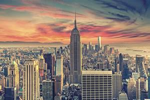 McDermott & Bull Stu Leibach New York City