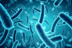 Coulter PartnersSally Ann Forsyth CEO Stevenage Bioscience Catalyst