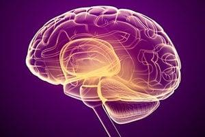 Vetted Solutions American Brain Tumor Association