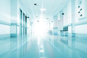Wheless Partners CEO Rainy Lake Medical Center