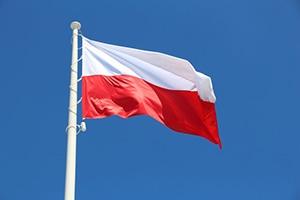 SpenglerFox Poland